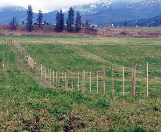 Farm Fence With We Damage Less Posts Than Traditional Drivers It Is Safer And The Are More Firmly Set Drop Style Hammers Farmfencing Score Fencing Revelstoke British Columbia